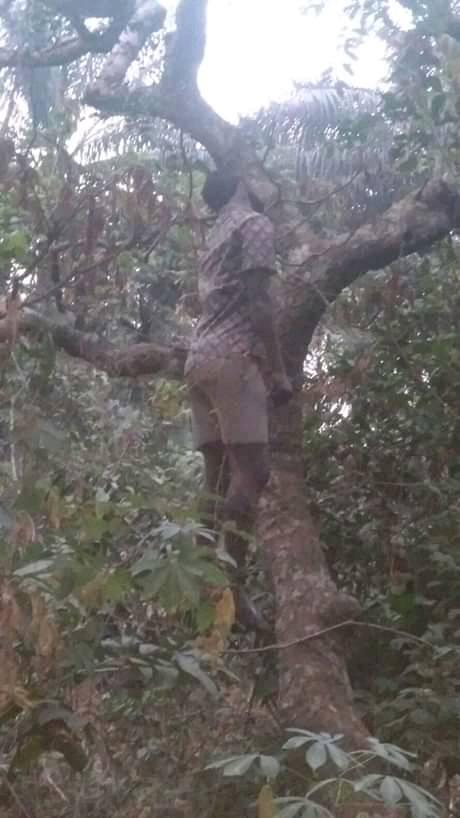https://www.newsvib.com/2019/01/ifeany-ogbu-commits-suicide-in-enugu.html