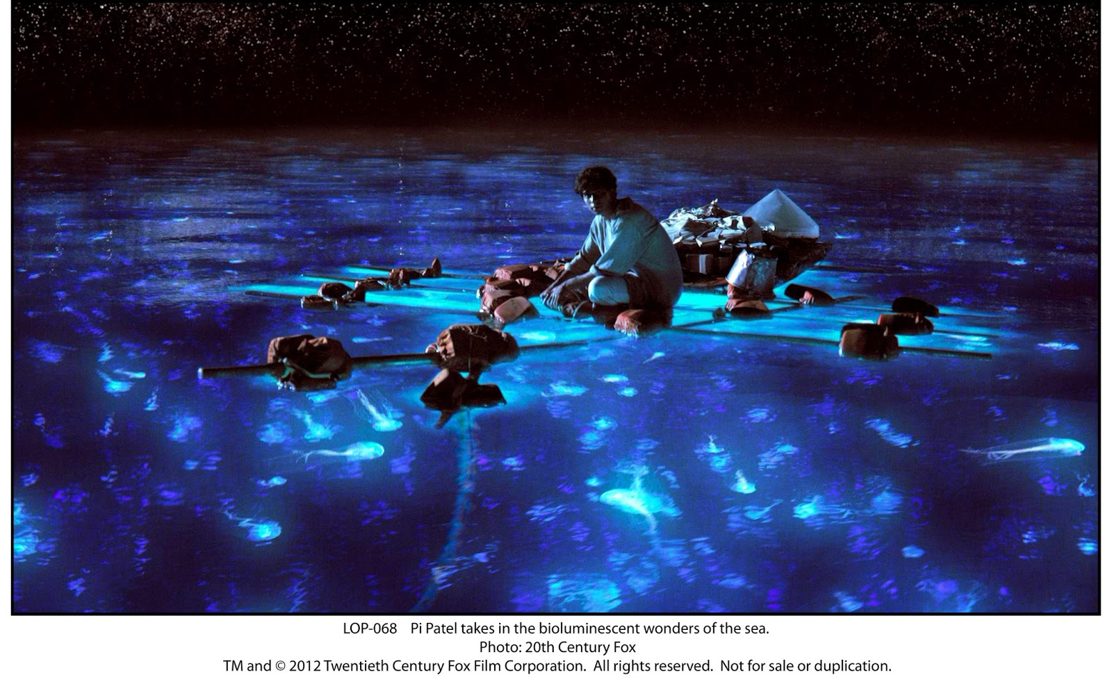 ocean of possibilities the making of life of pi conveyed a sense that it was beautiful but felt so desolate and lonely that you could sense through the imagery that pi is starting to despair