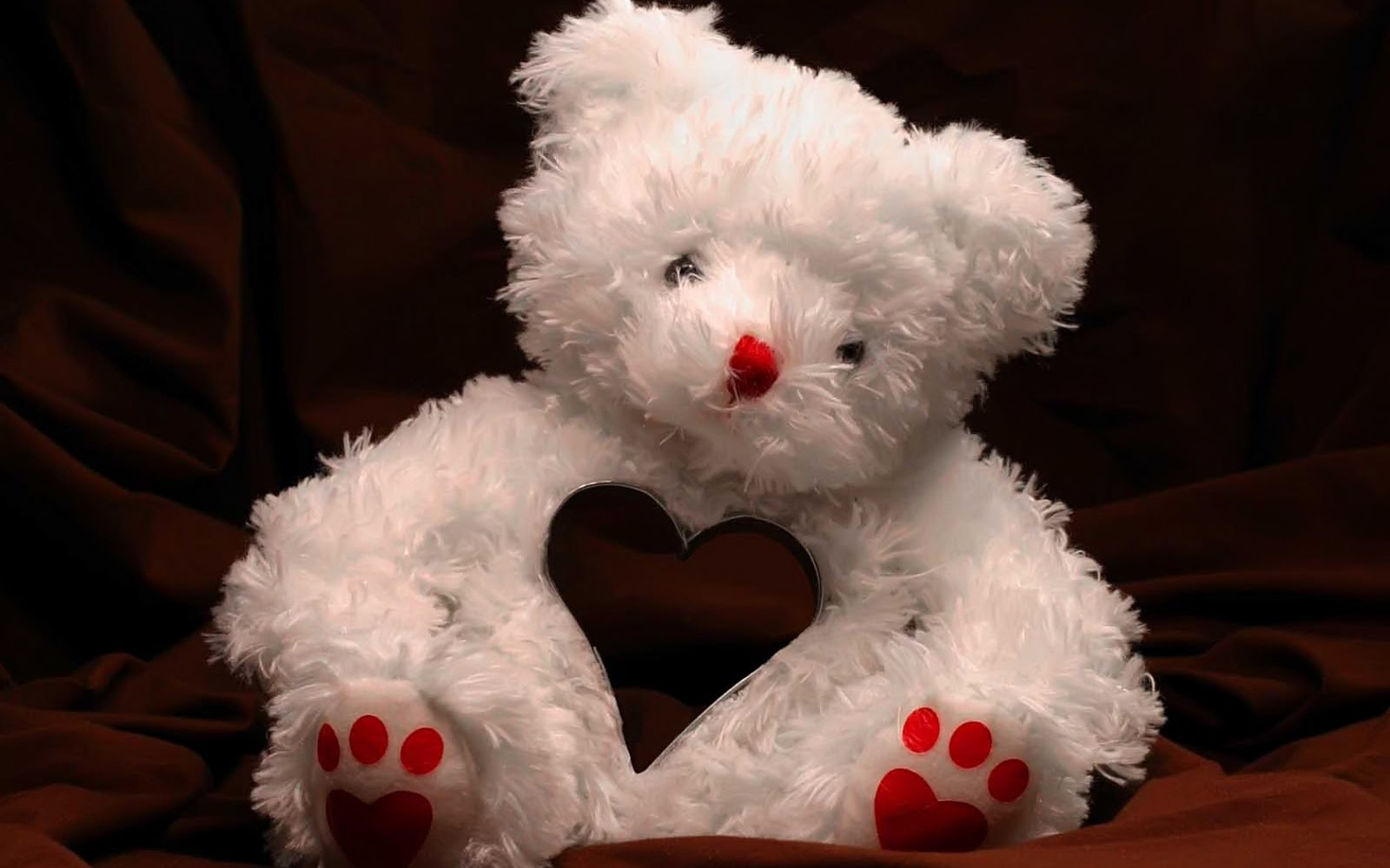 Teddy Bear HD Wallpapers 2013-2014