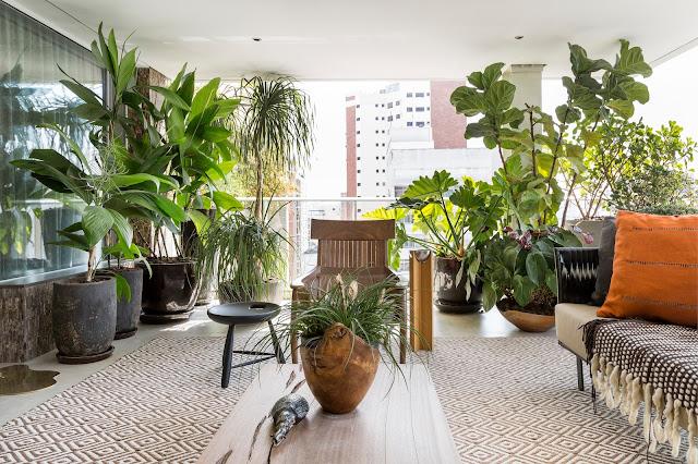 varanda-cheia-plantas-verde
