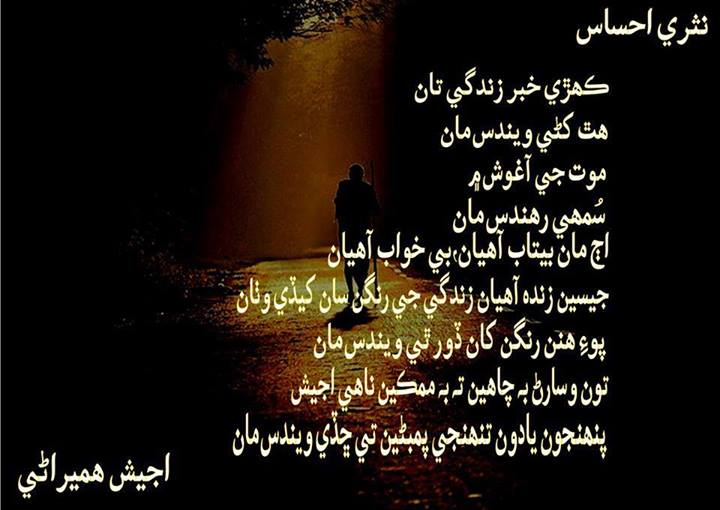 Beautiful Wallpapers With Quotes In Urdu Desktop Wallpapers Animals Wallpapers Flowers Wallpapers