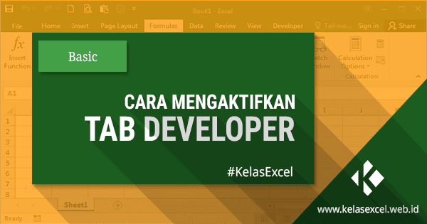 developer tab in excel 2007 tutorial pdf
