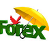 MONEY MAKING IN FOREX TRADING