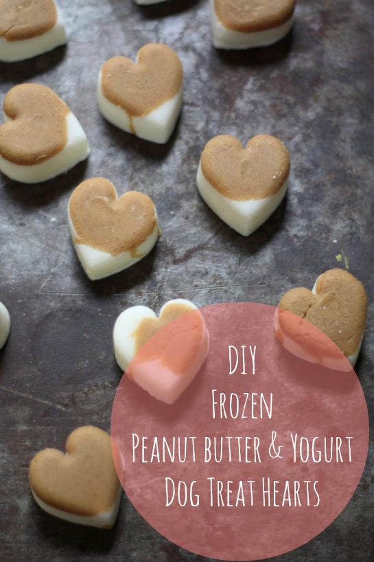 Diy Peanut Butter Dog Treats