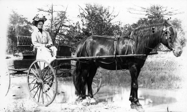 Woman and buggy Kerrville 1890s