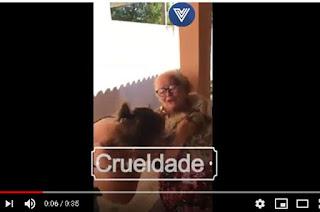 http://vnoticia.com.br/noticia/3325-v-deo-animal-morto-com-crueldade-em-guaxindiba