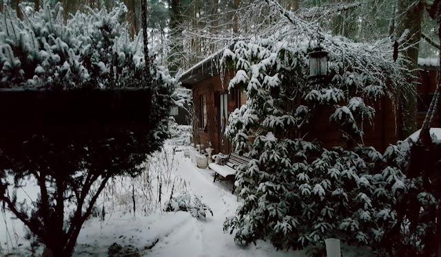 Herrlich verschneit war unser Grundstück