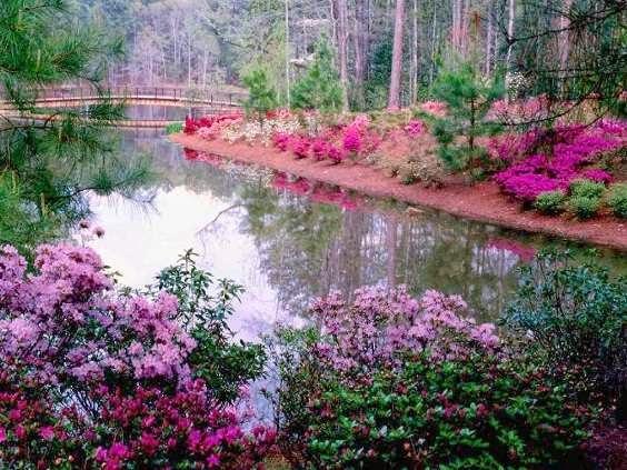 Paisajes hermosos de primavera