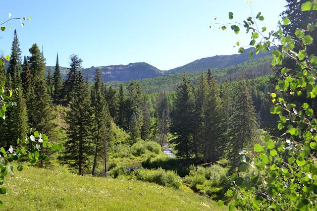 Turret Creek