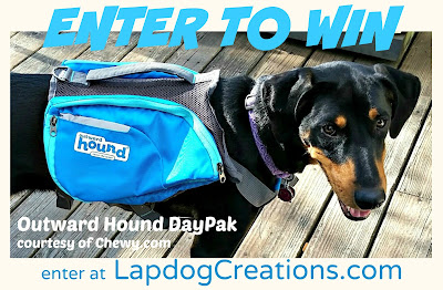 Enter for your chance to win an Outward Hound DayPak at LapdogCreations.com