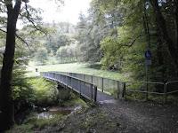 Auf dem Albtalweg (Graf-Rhena-Weg) von Frauenalb nach Busenbach