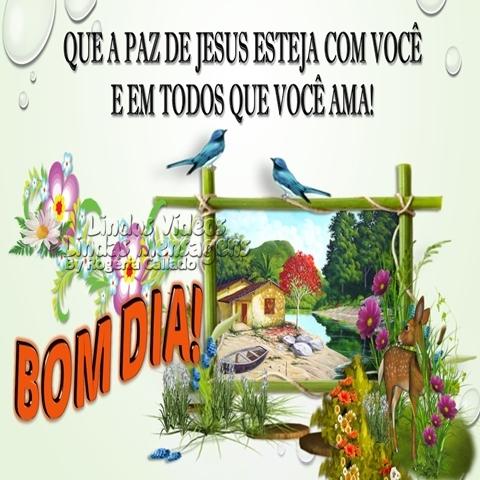 QUE A PAZ DE JESUS ESTEJA COM VOCÊ  E EM TODOS QUE VOCÊ AMA!  BOM DIA!
