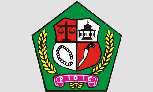 CPNS Kabupaten Pidie 2018