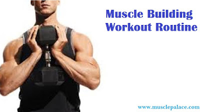 Workout Routine for Muscle Growth