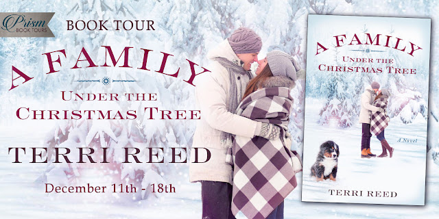 Grand Finale Blitz & #Giveaway: A Family Under the Christmas Tree by Terri Reed