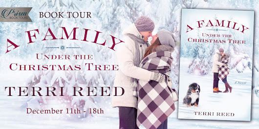 Blog Tour, Interview, Giveaway: A Family Under the Christmas Tree