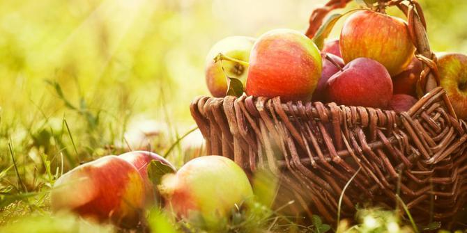 10 Buah-buahan yang Mengandung Serat Tinggi