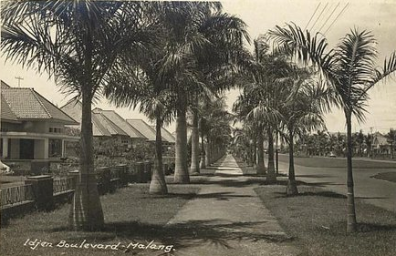 Ijen Boulevard Malang Tempoe Doeloe