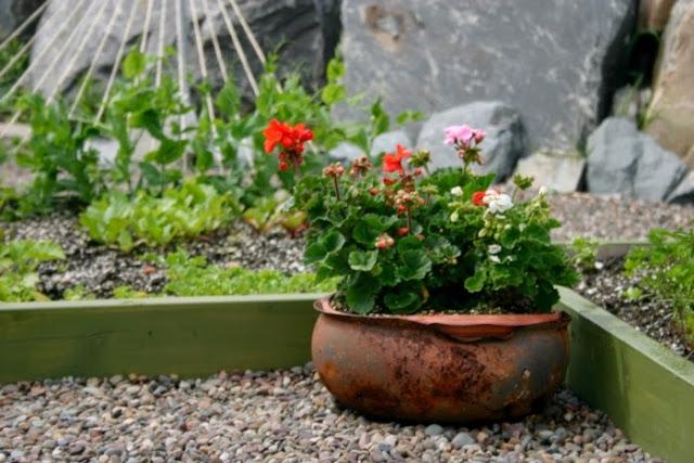 Garden decor with roadside trash