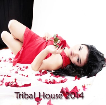 Best tribal house 2014