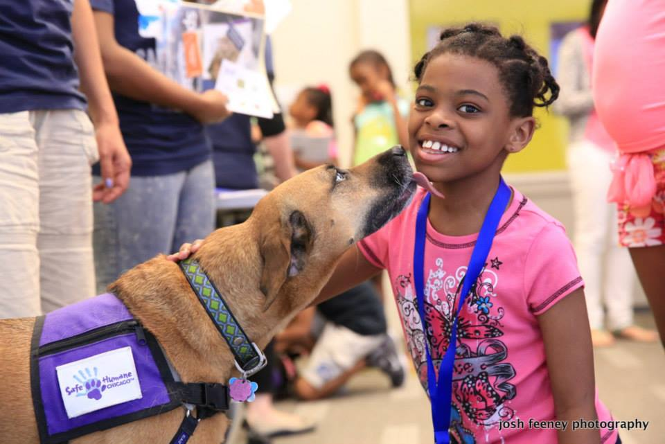 Safe Humane Ambassador dog teaches a little girl about kindness to animals