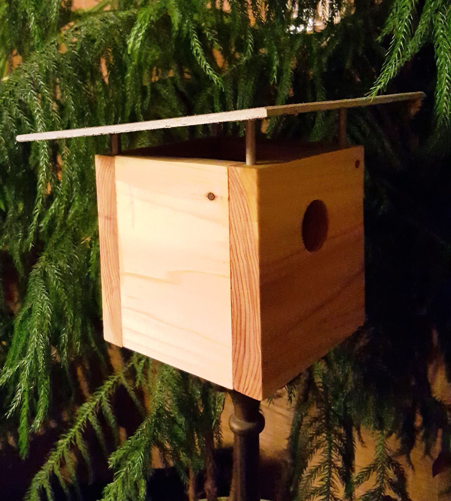 Tiny Tool Time: Mid Century Modern Bird House (Part 2 - Roof ...
