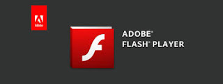 Adobe Flash Player 31.0.0.153 Offline Installer