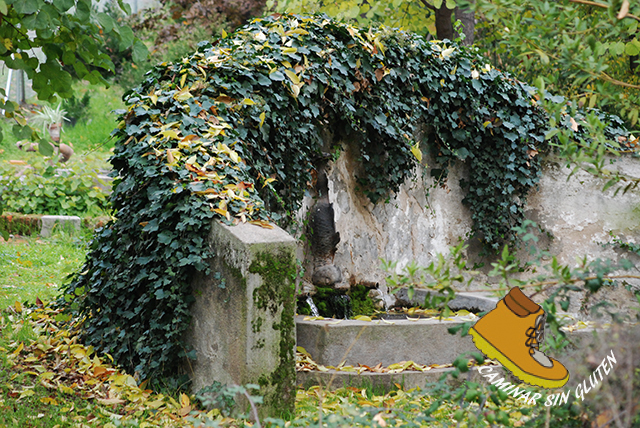 Fuente Minaya de Quinta de Torre Arias