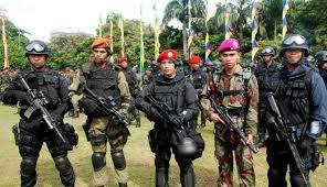Tugas Pokok Tentara Nasional Indoenesia (TNI)