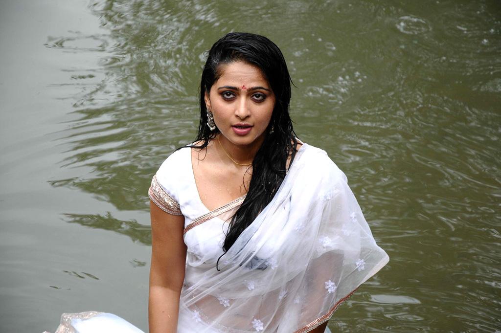 Anushka pic from dhamarukam