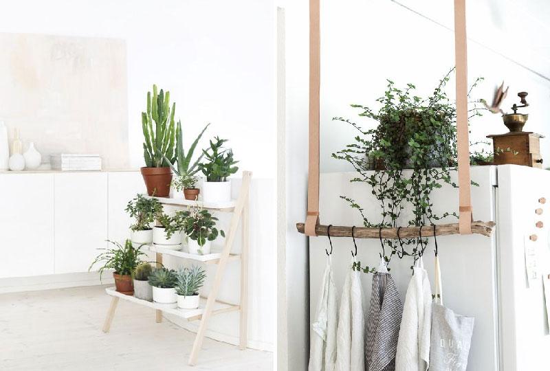 Idee e consigli per disporre le piante in casa