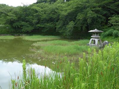 花博記念公園鶴見緑地 日本庭園 石灯籠 ガマ
