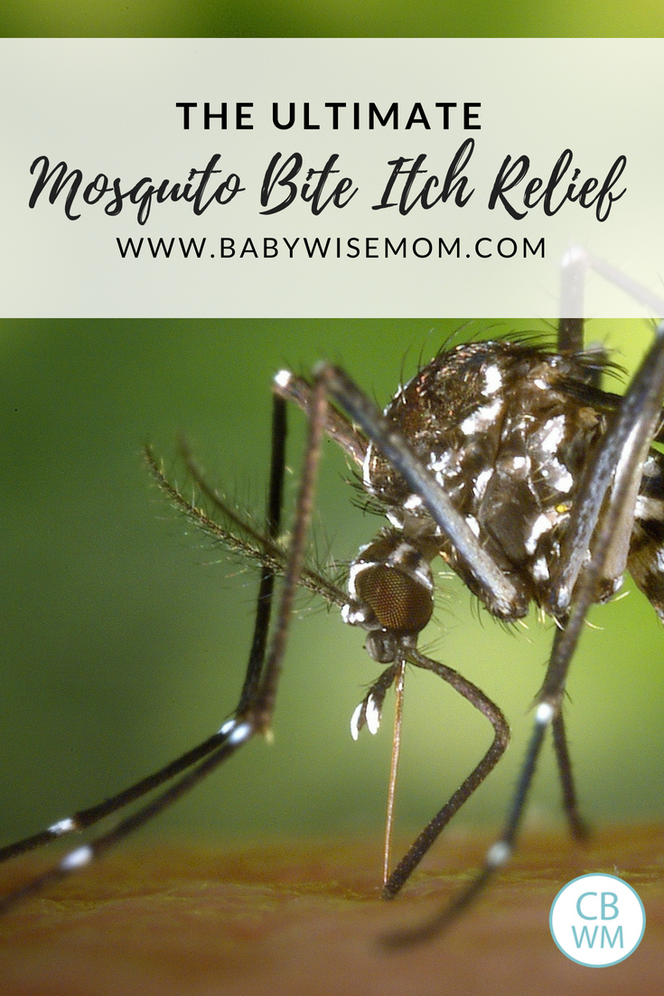 The Ultimate Mosquito Bite Itch Relief Solution - Chronicles of a ...