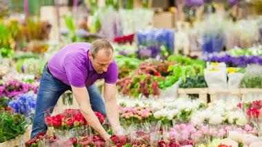 Las flores de Londres. Pasado y futuro de New Covent Garden Market