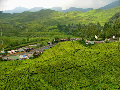Puncak Kota Bogor