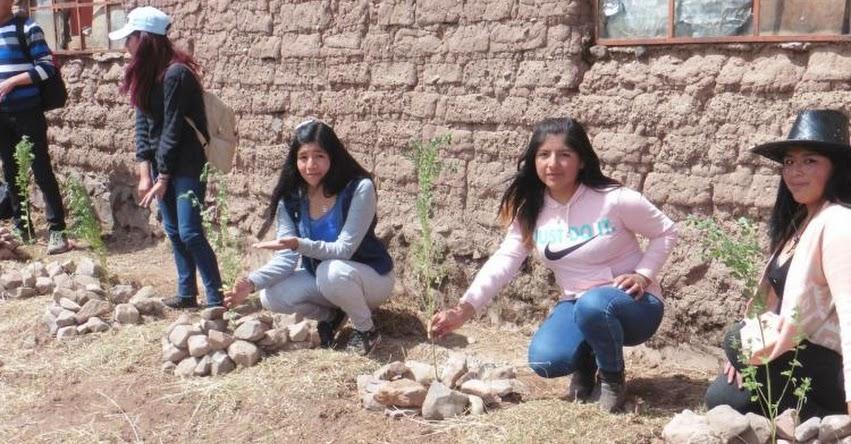 Estudiantes y soldados de Puno se preparan para forestar valles
