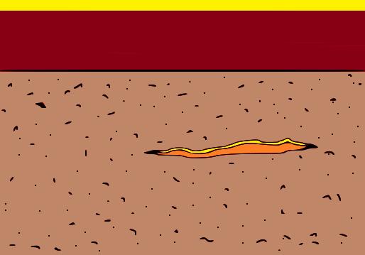 strappo-alla-moquette