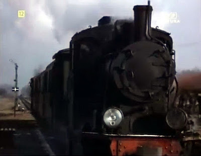 PKP Tarczyn Wąskotorowy