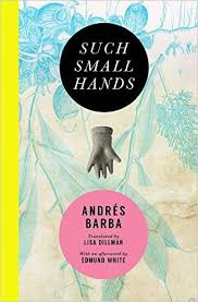 https://www.goodreads.com/book/show/31944839-such-small-hands
