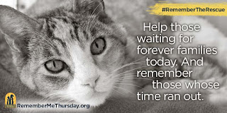 https://remembermethursday.org/
