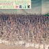 Jual Batang Stek Anggur Harga Ekonomis
