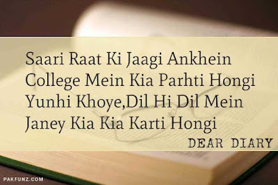 dear diary urdu poetry, love quotes, thoughts and silent words 9