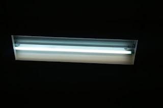 Lampu Neon (TL)