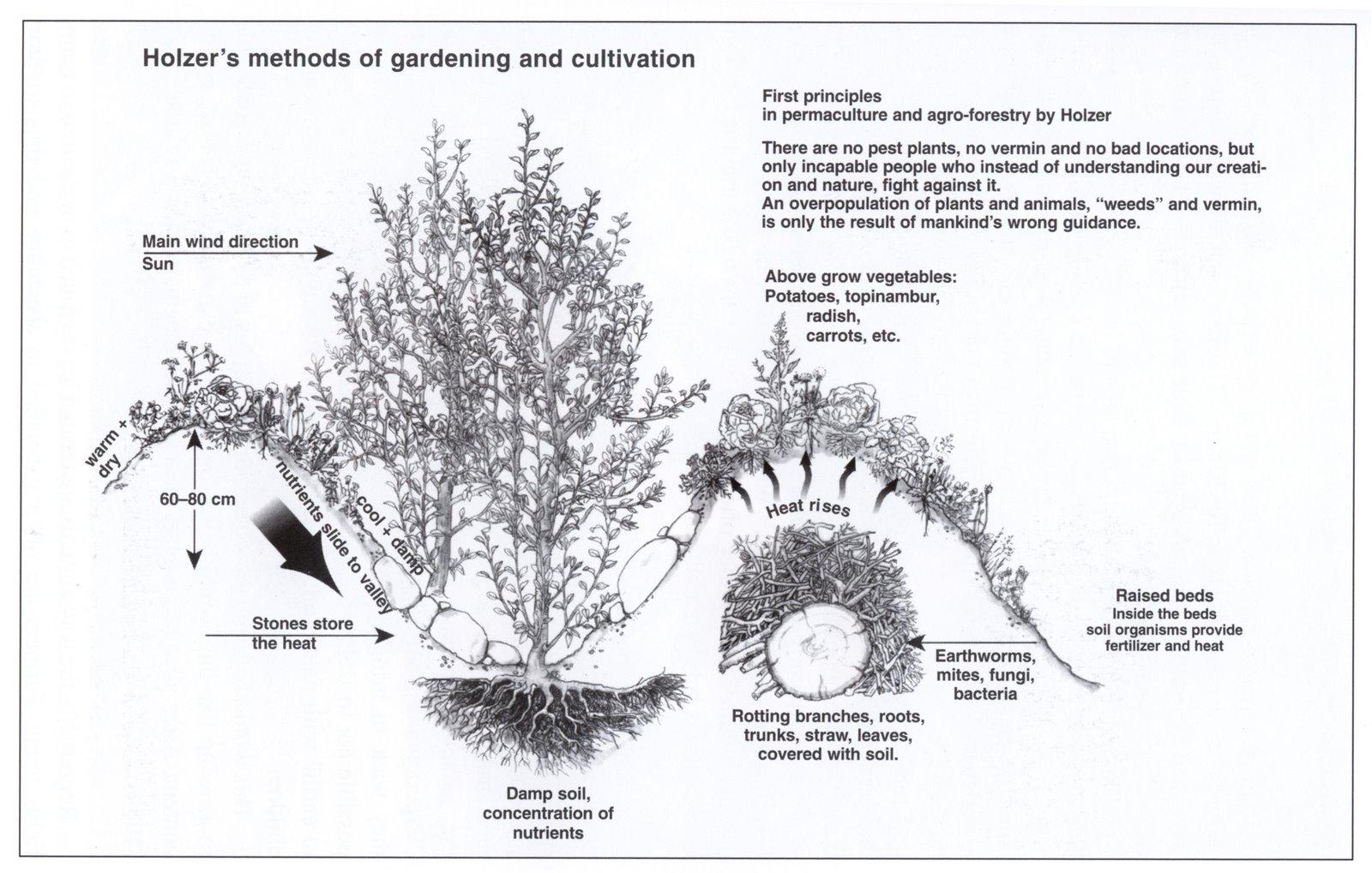 Permacultura Autosuficiencia Y Tecnologia Swales O