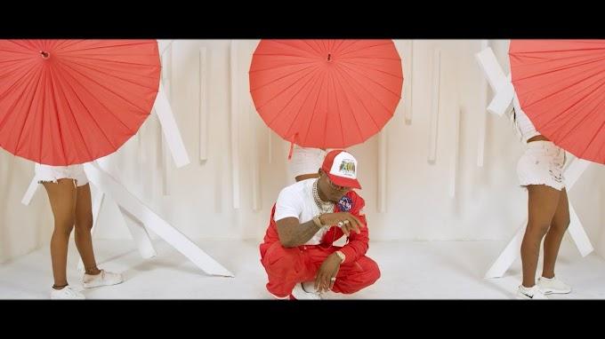 VIDEO | Harmonize Ft Diamond Platnumz & Burna Boy – Kainama | Download