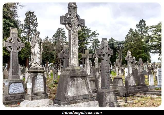 cemiterio goticos sozinho lapides