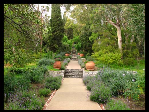 Reportages Ventimiglia I Giardini Botanici Hanbury
