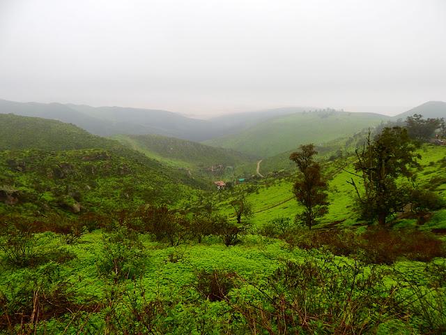 Lomas de Lachay Reserva Nacional Huacho Huaura