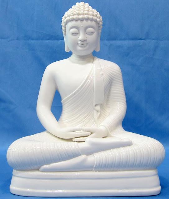 Đạo Phật Nguyên Thủy - Kinh Tương Ưng Bộ - Ví dụ con Rùa