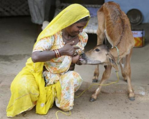 african village women